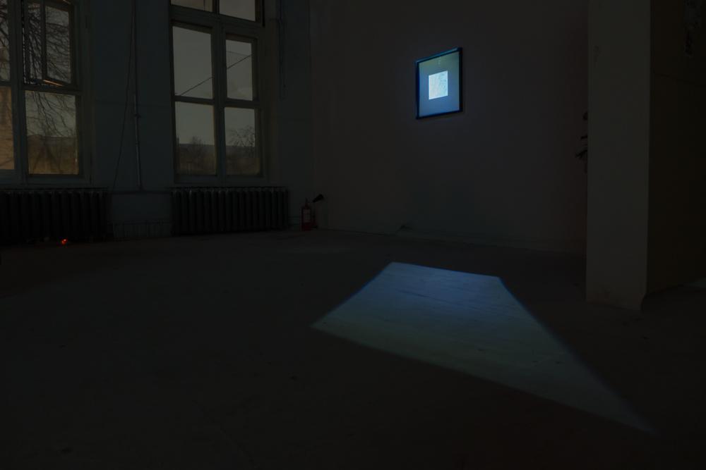 BRAIN PARASITE, Studio of Foundation of Vladimir Smirnov and Konstantin Sorokin, Moscow, 2015