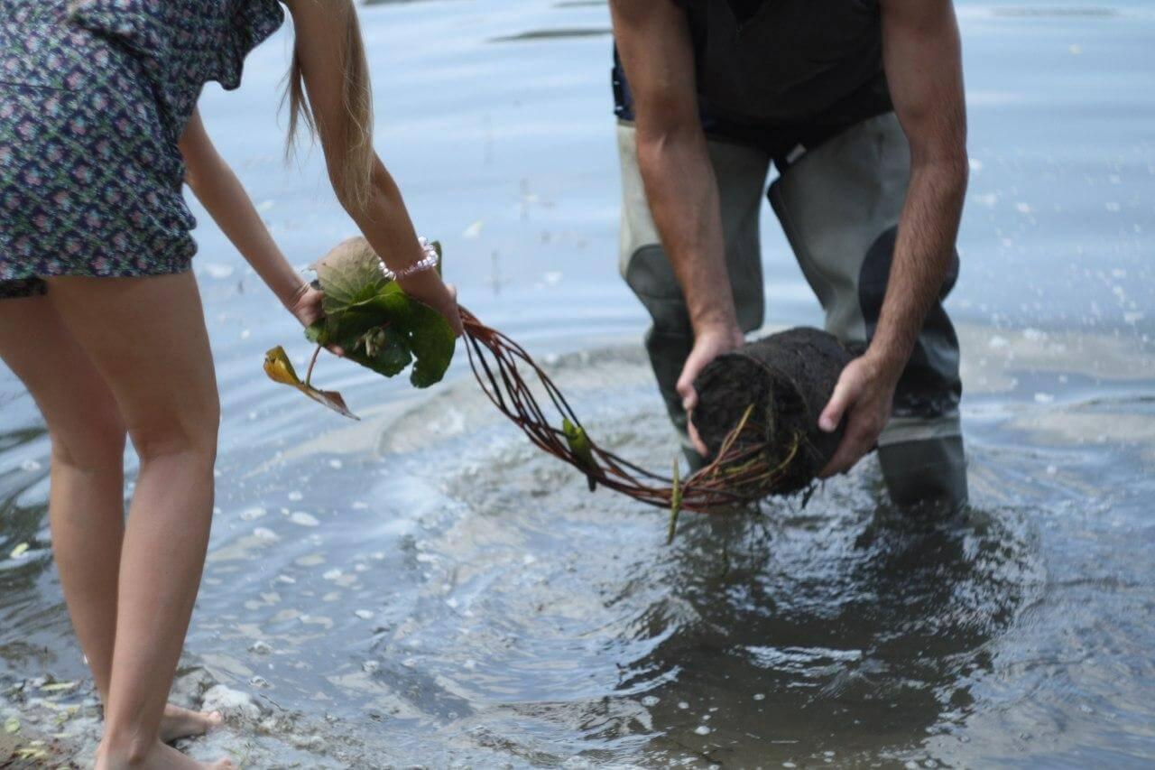 """Финальная часть перформанса """"Цветущая Нимфея"""": высаживание нимфеи в озеро. Фото: Антонина Симонова"""
