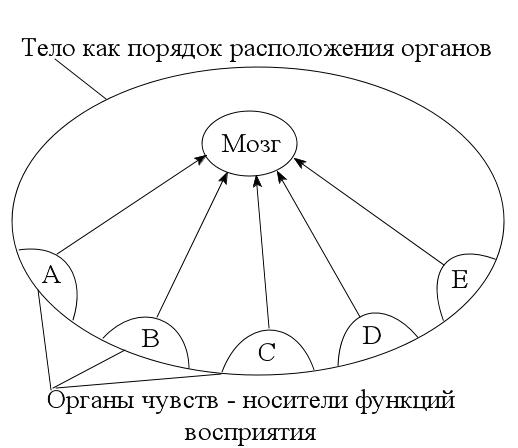Схема 5. Восприятие