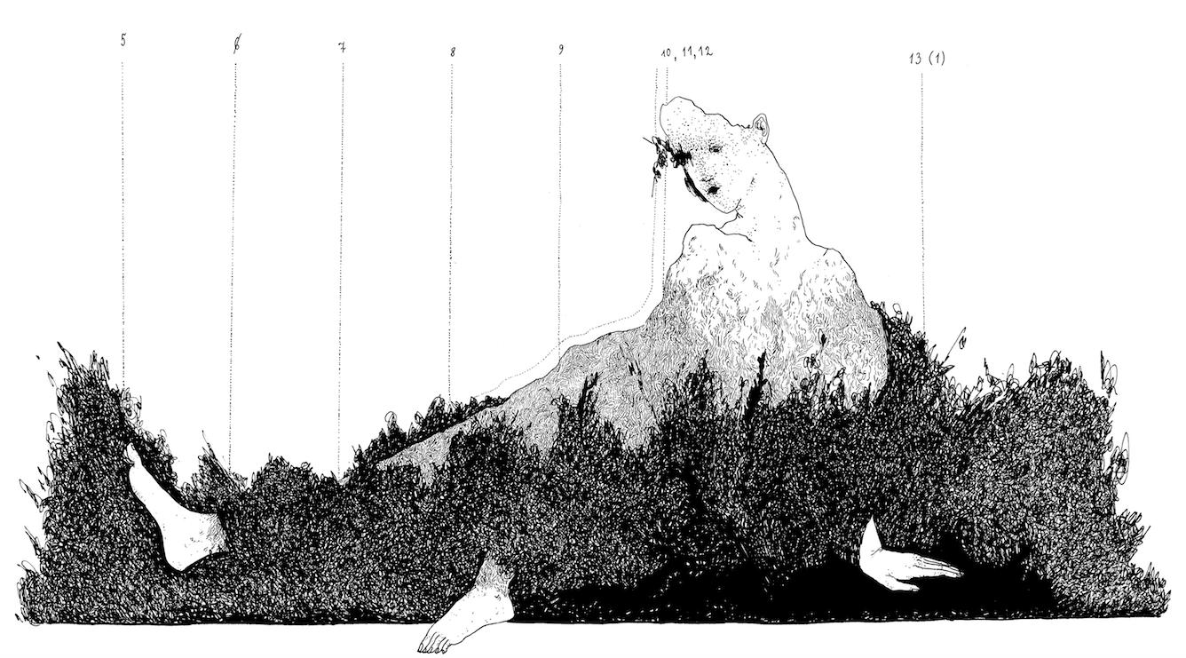 иллюстрации Кати Хасиной