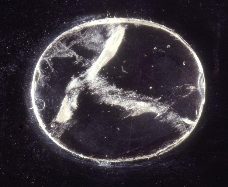 Линза Нимруда – один из «неуместных артефактов». Фото: <a>British Museum</a>