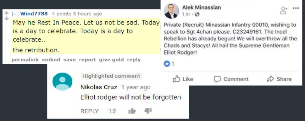 Посты, одобряющие преступление Элиота Роджера