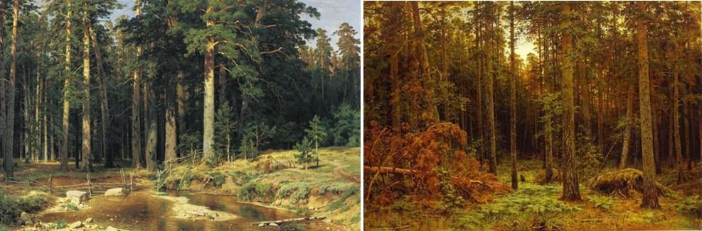 Слева: Корабельная роща. И.И. Шишкин, 1898. Государственный Русский музей. Справа: Корабельный лес. И.И. Шишкин, 1885. Го