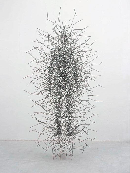 Antony Gormley. Quantum cloud V. 1999