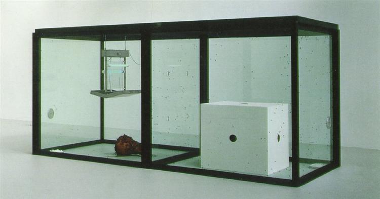 Дэмиан Хёрст. Инсталляция «Тысяча лет». 1990 год.