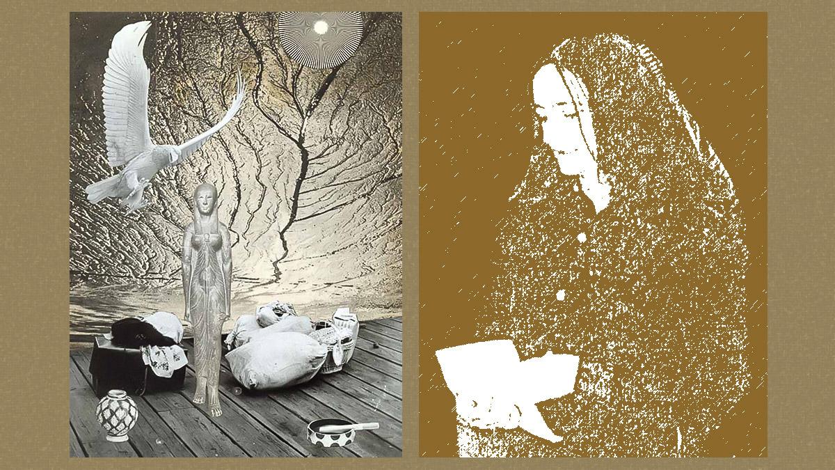 Коллаж художницы Татьяны Доброхотовой