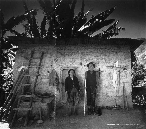Дарран Рис. Луис и Селестина, 1995, перуанские фермеры, выращивающие кофе.New Internationalist magazine.