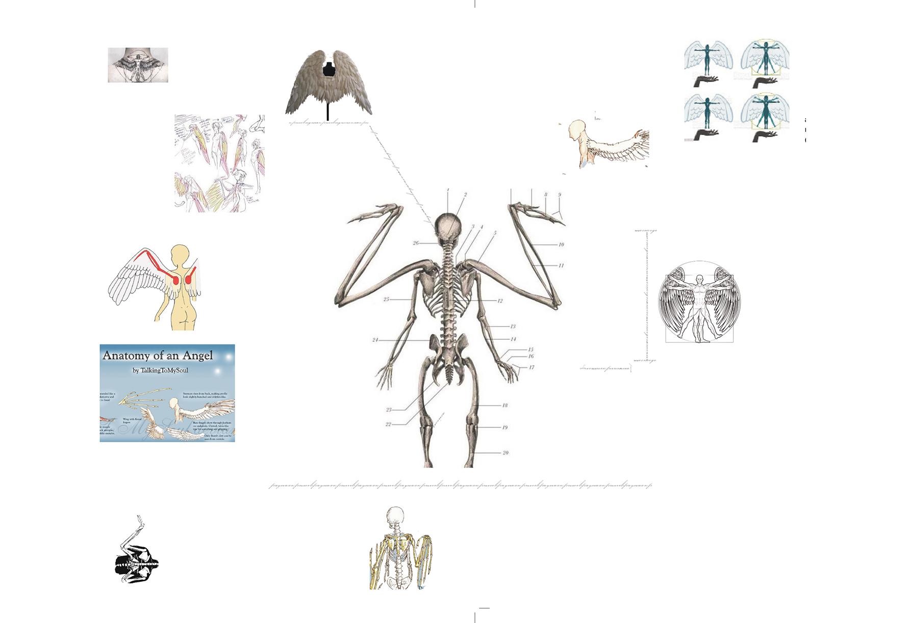 Второй анатомический уровень. Фандомный, форумный