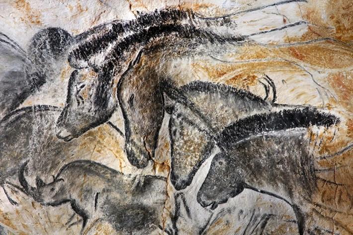 Одно из древнейших изображений тарпанов. Наскальный рисунок в пещере Шове (Франция). Люди обитали в пещере 37000-33500 л.