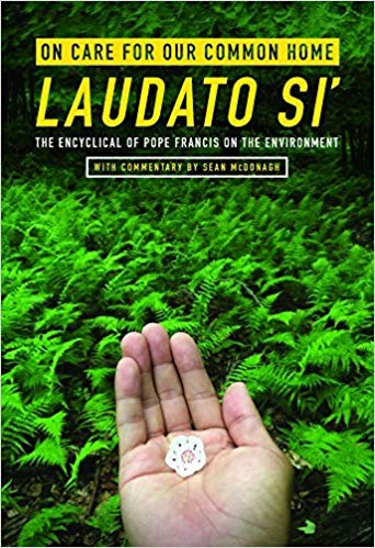 «Laudato Si': о заботе во благо нашего общего дома»