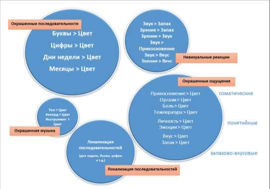 Основные типы синестезии. Источник диаграммы в переводе А.В.Сидорова-Дорсо: Novich et al., 2011.