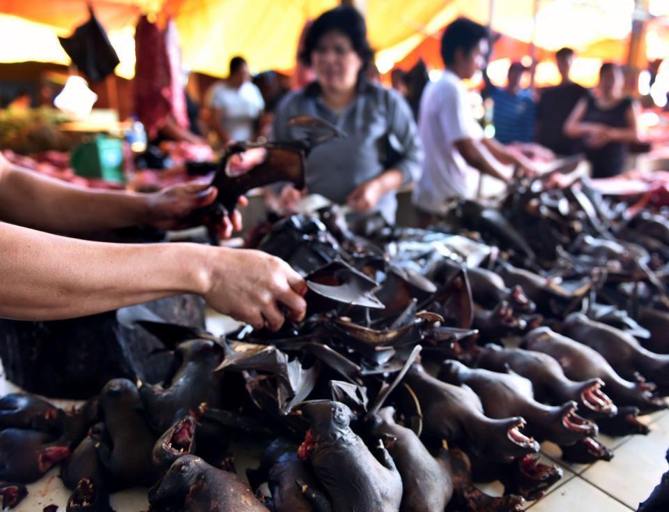 Чёрный рынок животных в Китае