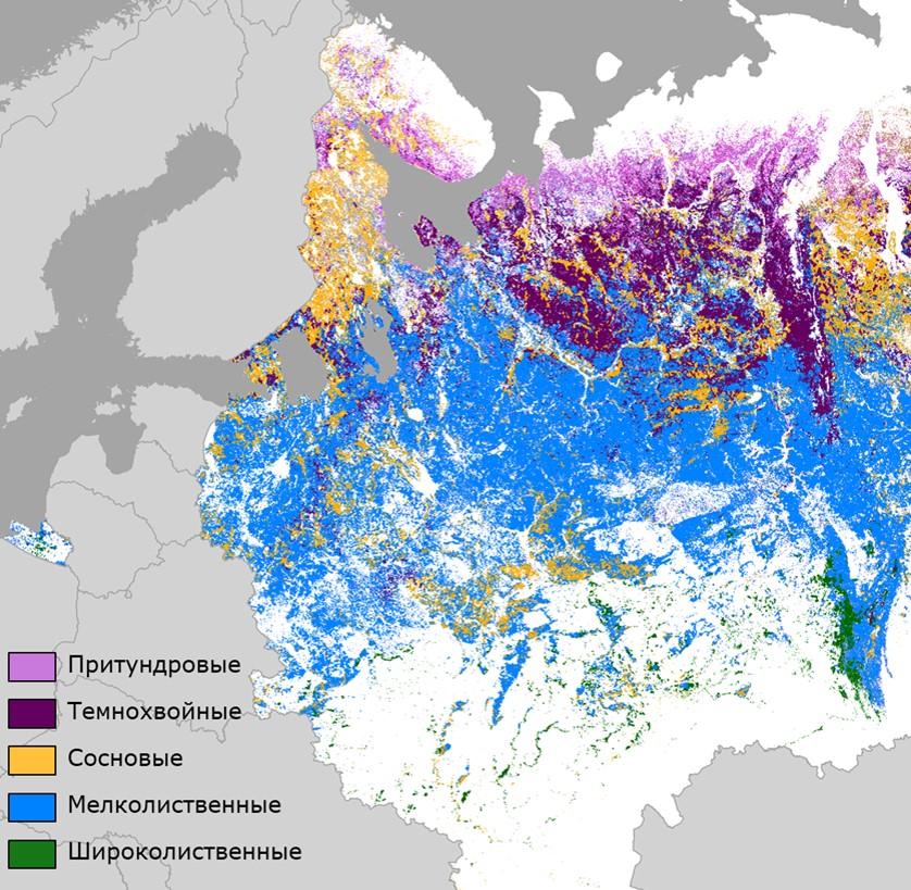Фрагмент карты «Леса России» (Барталев и др., 2004). <a>Источник</a>
