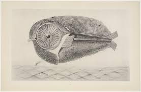 """Max Ernst. The Fugitive (L'Évadé) from """"Natural History"""""""