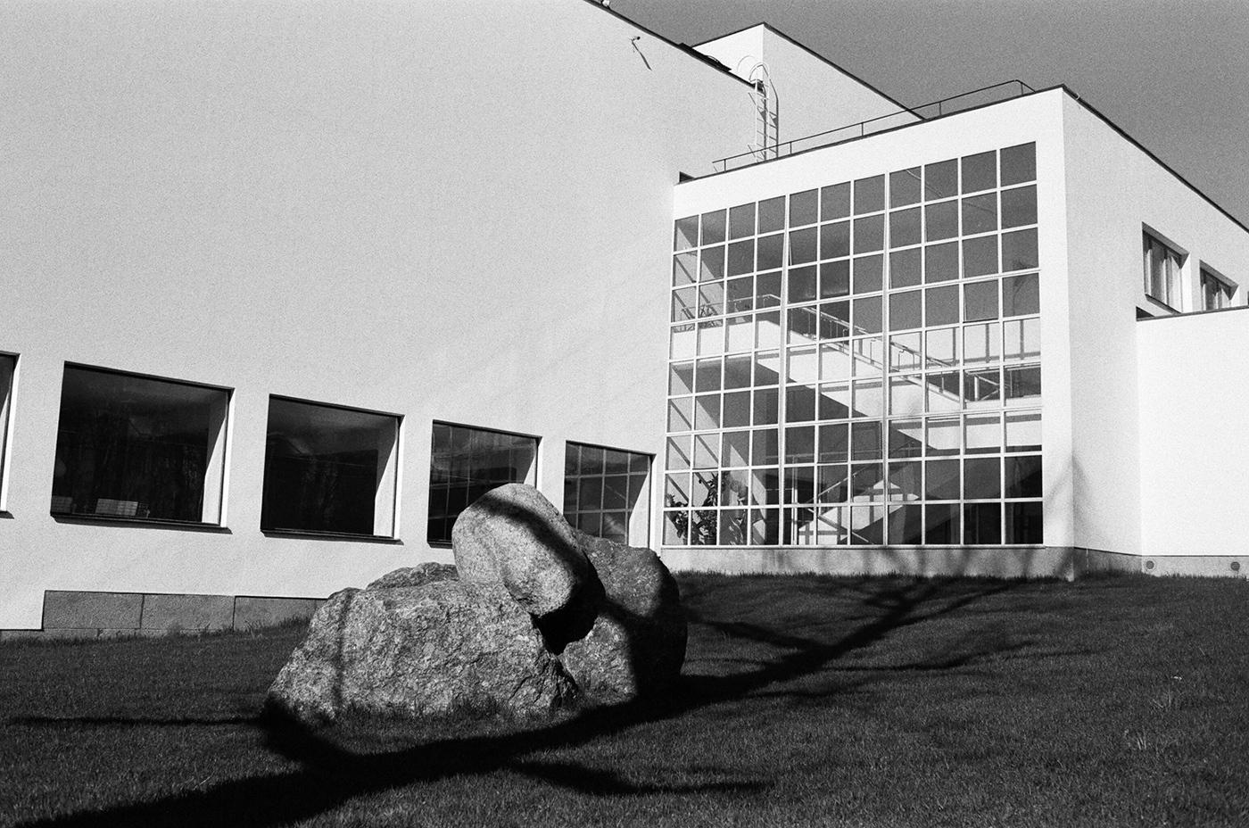 Библиотека Алвара Аалто в Выборге. Фотография Мити Ганопольского
