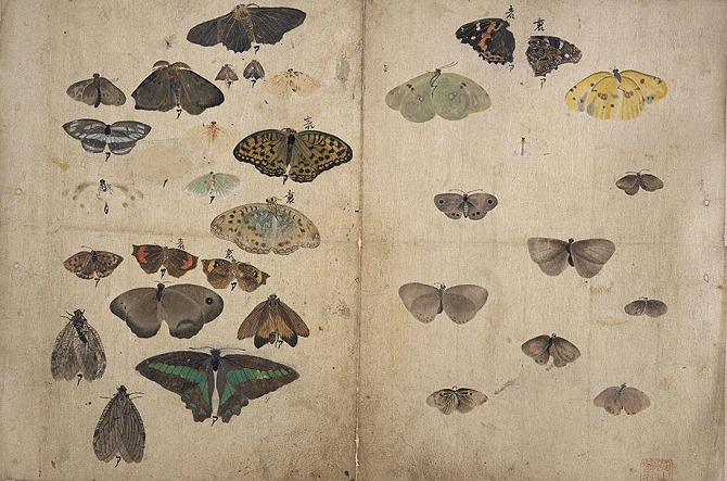 Maruyama Okyo, Album of Sketches, 1776, Tokyo National Museum