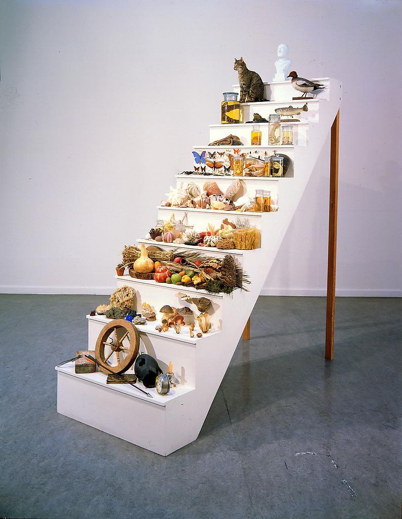 <b>Илл. 5.</b> Scala Naturae (инсталляция). 1994. Автор инсталляции и фото: Марк Дион.
