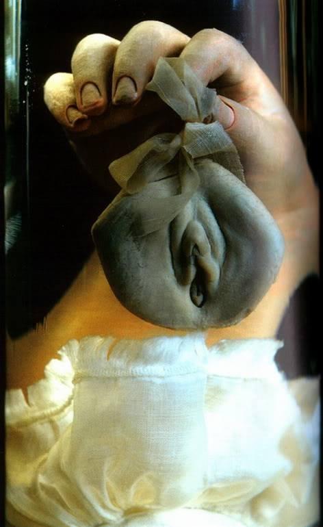 Рука которая держит вульву. Анатомический препарат Фредерика Рюйша.