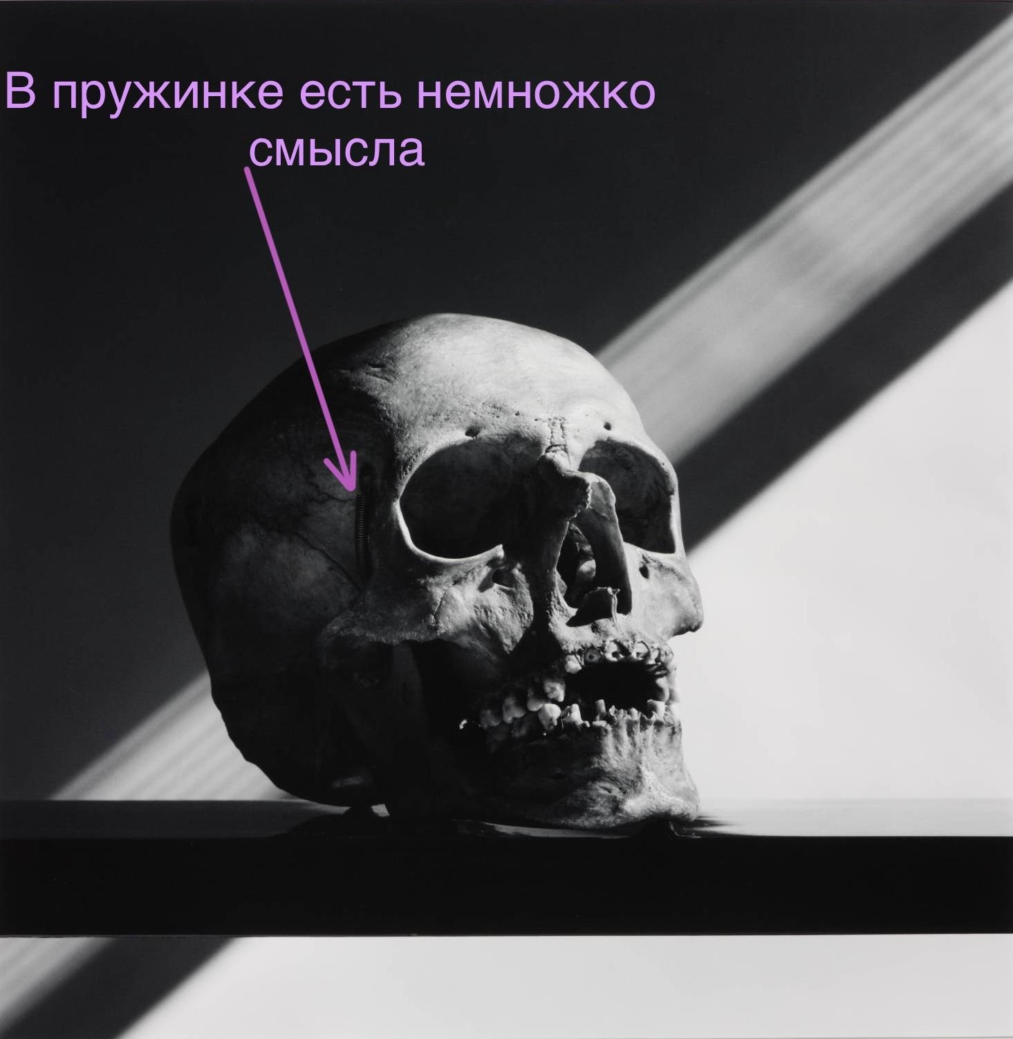 """""""Skull"""", Robert Mapplethorpe, 1988"""