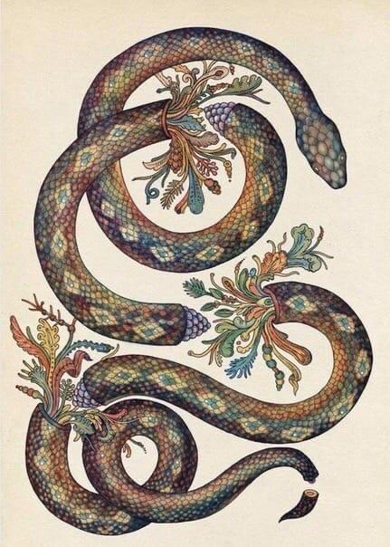 Иллюстрация Kate Sсott, 2012