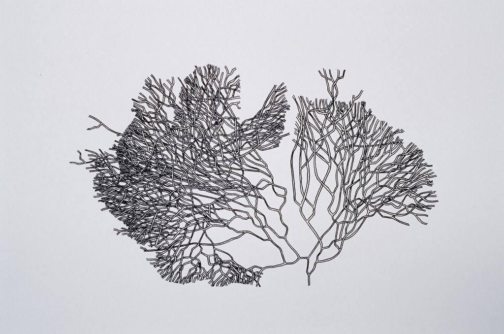 ИллюстрацияМайлза Спритсма