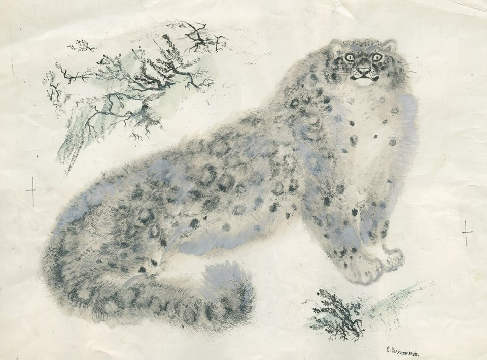 Иллюстрация Чарушина