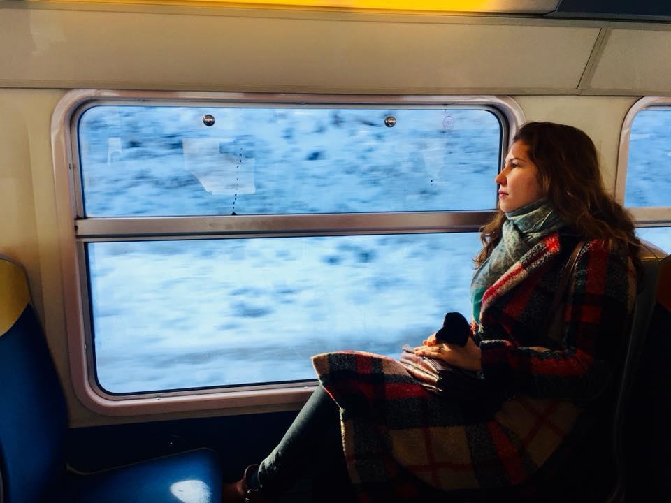 Поезд из Парижа в Немур