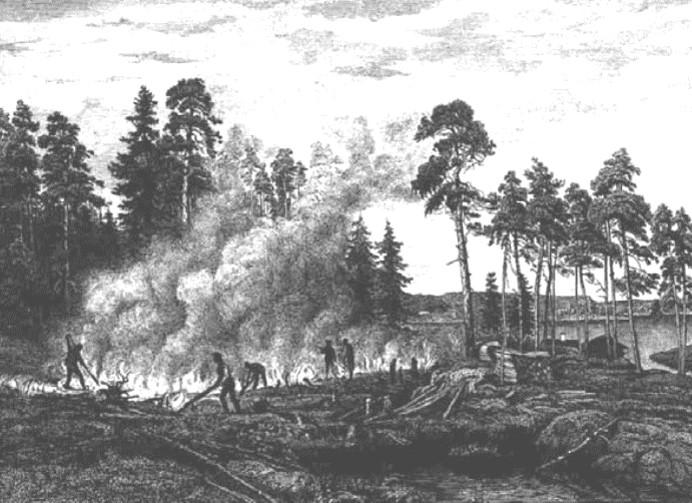 Подсека в Иасалми, восточная Финляндия. B. Lindholm, XVIII в.