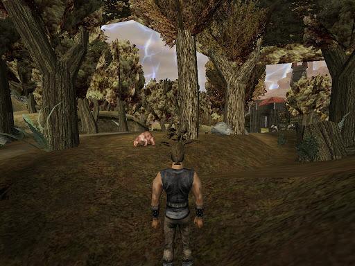 Gothic (2001): изнутри леса; вверху виднеется текстура полога, которая одета, будто юбка, на весь лесной массив