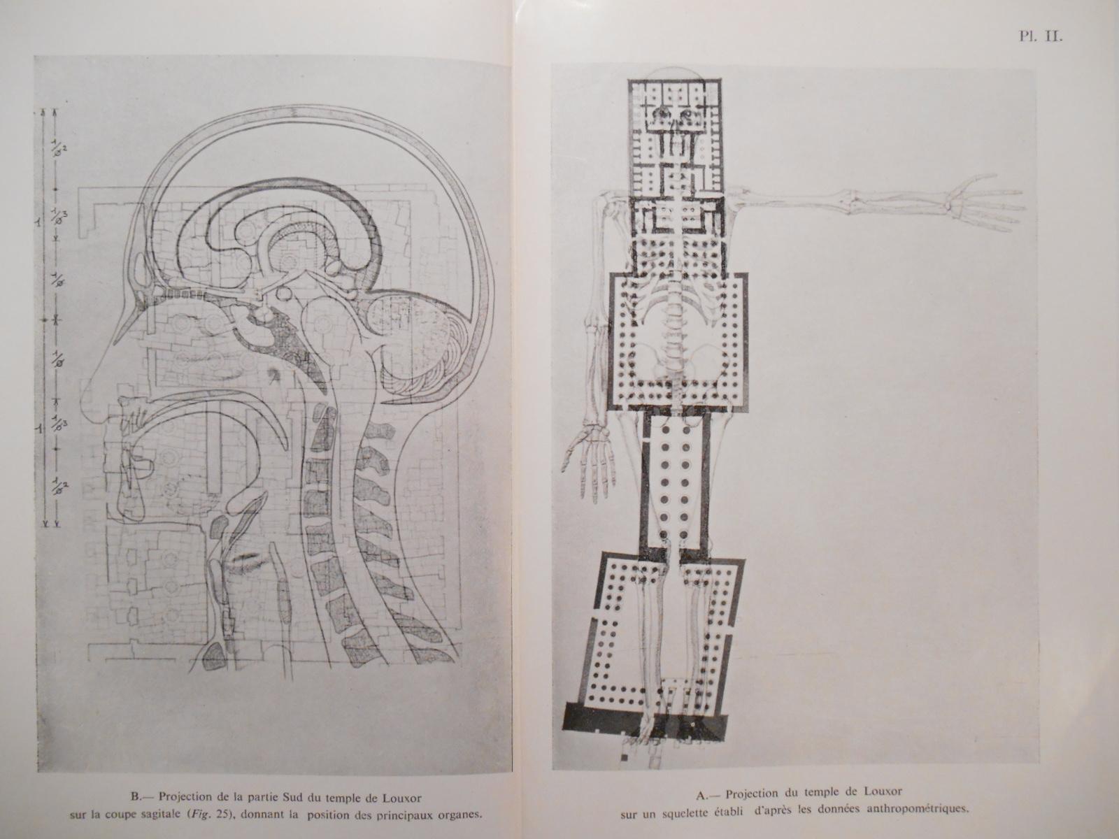 Фрагмент знаменитого эзотерического исследования Рене Шваллера де Любича «Храм в человеке» о «секретах» египетской архите