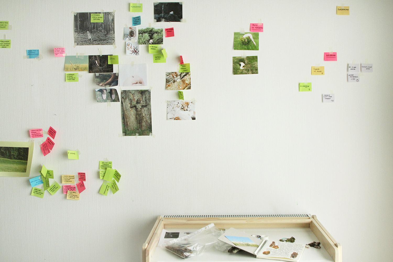 Работа над исследовательской частью проекта в «Шишимской горке» / Фото: Анастасия Богомолова