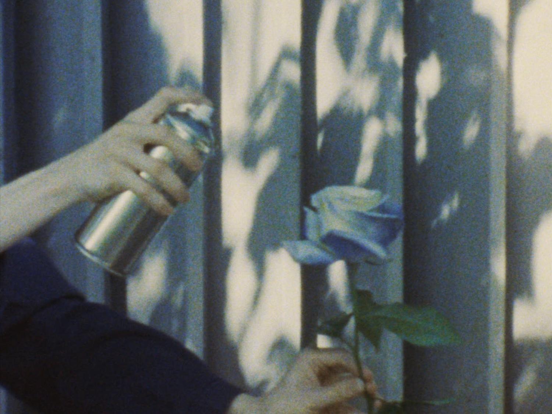 Кадр из фильма «Синяя роза» Ольги Корсун, 2020 год