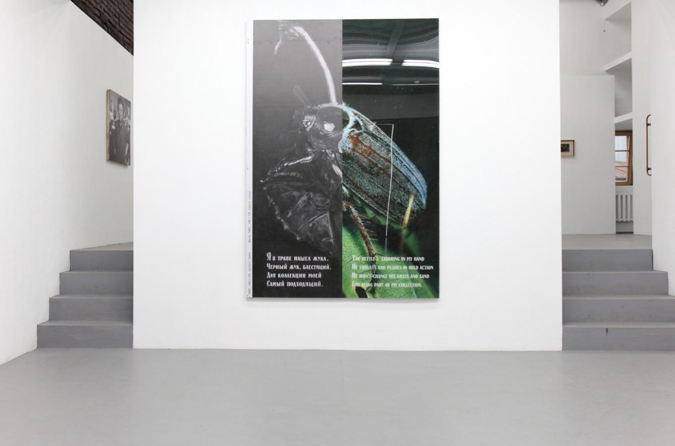 Ян Гинзбург, «Механический жук», 12 декабря 2017 — 11 февраля 2018 @ Osnova