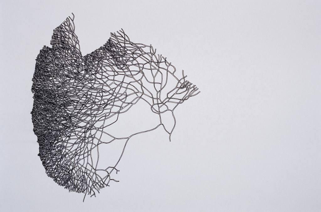 Иллюстрация Майлза Спритсма